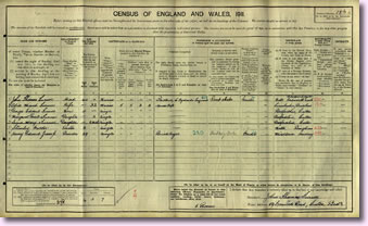 1911 Census Record
